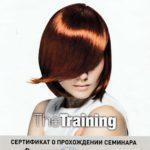 Vershinin-Sergej-ARTEGO-pdf.io-min.jpg